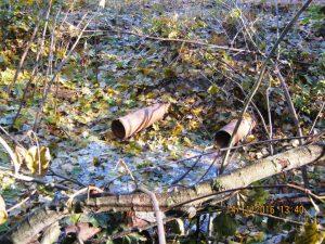Regenwasser wird in den benachbarten Wald abgeleitet (WSH 1). Gelegentlich bildet sich dabei Schaum.